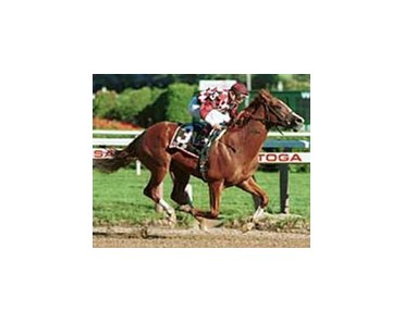 City Zip, ridden by Jose Santos, captures The Grade II Saratoga Special at Saratoga Race Course, Wednesday, Aug. 16, 2000, in Saratoga Springs, N.Y. (AP Photo/New York Racing Association Adam Coglianese)
