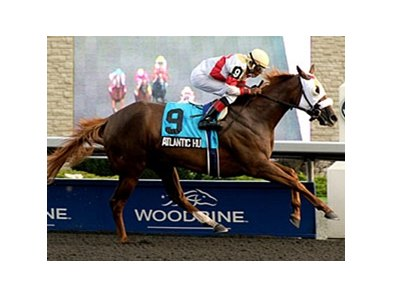 Atlantic Hurricane and Emile Ramsammy take the Seaway at Woodbine.