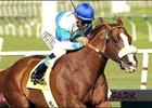 Bordonaro wins Underwood Stakes, Saturday at Hollywood Park.