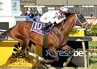 "Commissioner and Javier Castellano take the Pimlico Special.<br><a target=""blank"" href=""http://photos.bloodhorse.com/AtTheRaces-1/At-the-Races-2015/i-ZsP9NDZ"">Order This Photo</a>"