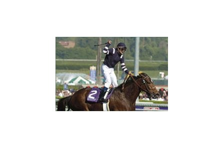 Adoration, winning the Breeders' Cup Distaff.