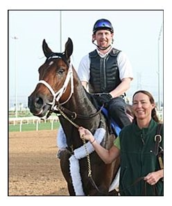 2006 Horse of the Year Invasor, on the track at Nad al Sheba.
