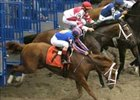 "Historic Belmont seen by fewer viewers.<br><a target=""blank"" href=""http://www.bloodhorse.com/horse-racing/photo-store?ref=http%3A%2F%2Fpictopia.com%2Fperl%2Fgal%3Fgallery_id%3D16620%26sequencenum%3D0%26provider_id%3D368%26process%3Dgallery%26page%3Dthumbnails%26ref%3Dstory"">Order Belmont Photos</a>"