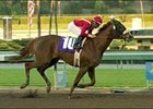 Swiss Diva Posts 8 1/2-Length Win in Cal Breeders Champion