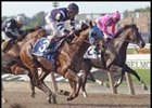 Frankel Sends Out Highweights in San Antonio Handicap