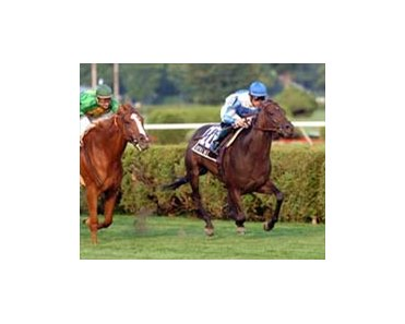 "Lake George winner Rutherienne looks to make it five-in-a-row in Saturday's Del Mar Oaks.<br><a target=""blank"" href=""http://www.bloodhorse.com/horse-racing/photo-store?ref=http%3A%2F%2Fpictopia.com%2Fperl%2Fgal%3Fprovider_id%3D368%26ptp_photo_id%3D1834859%26ref%3Dstory"">Order This Photo</a>"