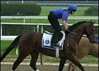 Godolphin Racing's Sakhee worked over the Belmont track Tuesday morning.