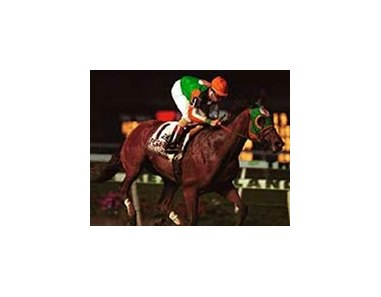 Kiss A Native, with Mickey Walls aboard, runs to victory in the $250,000 Pegasus Handicap on Friday night at the Meadowlands.