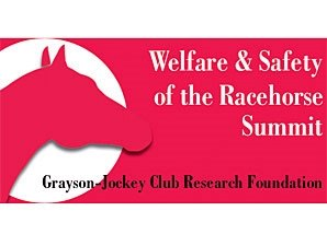Welfare and Safety Summit Announces Agenda