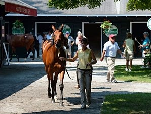 High Hopes Heading Into NY-Bred Yearling Sale
