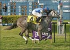 Bedanken, ridden by Don Pettinger, crosses the finish line to win the Bayou Breeders' Cup Handicap at the Fair Grounds.