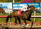 "Tanda held off favored Switch to win the Railbird Stakes at Hollywood Park.<br><a target=""blank"" href=""http://www.bloodhorse.com/horse-racing/photo-store?ref=http%3A%2F%2Fpictopia.com%2Fperl%2Fgal%3Fprovider_id%3D368%26ptp_photo_id%3D8951212%26ref%3Dstory"">Order This Photo</a>"