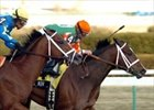 Like Now shown winning the 2006 Gotham Stakes.