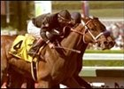 Buddy Gil, foreground, and Indian Express, in Santa Anita Derby photo finish.
