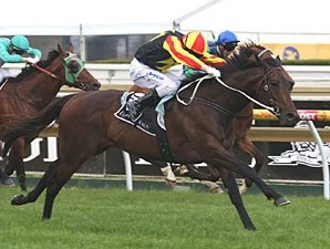 Alamosa Takes Group I Toorak Handicap