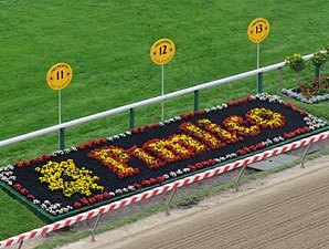 Rachel Alexandra the 2-1 Preakness Favorite