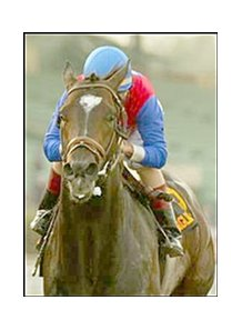 Medaglia d'Oro, favored in Whitney.
