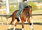 Proviso