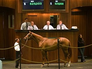 OBS March Sale Results Provide Hope