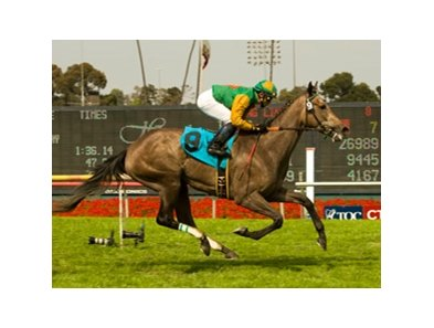 "Well Monied<br><a target=""blank"" href=""http://www.bloodhorse.com/horse-racing/photo-store?ref=http%3A%2F%2Fpictopia.com%2Fperl%2Fgal%3Fprovider_id%3D368%26ptp_photo_id%3D8175302%26ref%3Dstory"">Order This Photo</a>"