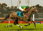 "Well Monied will make her first start in 11 months in the Wilshire Handicap at Hollywood Park.<br><a target=""blank"" href=""http://www.bloodhorse.com/horse-racing/photo-store?ref=http%3A%2F%2Fpictopia.com%2Fperl%2Fgal%3Fprovider_id%3D368%26ptp_photo_id%3D8175302%26ref%3Dstory"">Order This Photo</a>"