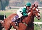 Lonesome Glory, Blythe Miller aboard, winning the 1993 Breeders' Cup Steeplechase.