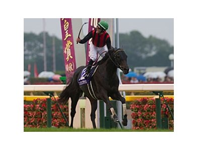 Eishin Flash wins the Emperor's Cup Fall (Tenno Sho Aki).