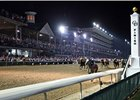 Churchill Downs has scheduled six night racing programs for 2010.