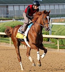 5% of Dullahan's Derby Earnings to Rider Fund
