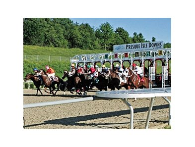 horsemen casino