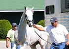 "Hansen is feeling good as he arrives at Churchill Downs.<br><a target=""blank"" href=""http://photos.bloodhorse.com/TripleCrown/2012-Triple-Crown/Works/22611108_LR3wcn#!i=1825415275&k=pnmk72W"">Order This Photo</a>"