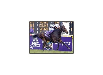 Domedriver, winning the Breeders' Cup Mile.
