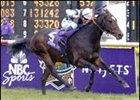 Domedriver upset Rock of Gibraltar in the 2002 Breeders' Cup Mile.