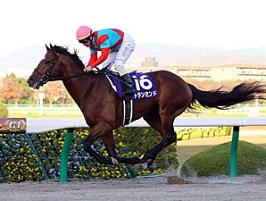 Transcend Typifies Wild Rush Record in Japan