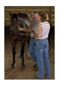 Michelle and Jody Huckabay working with a yearling in the round pen at their Elm Tree Farm near Paris, Ky.