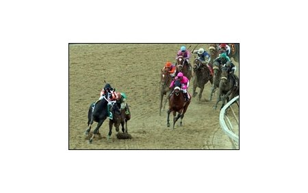 Scrappy T (left) glides out into the path of eventual Preakness winner Afleet Alex.