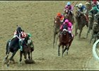 Steve Haskin's Preakness Story: Bump and Run