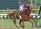 Azeri becomes money-winningest mare with Go for Wand victory.