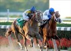 Curlin (left) comes from behind in the stretch to catch Lawyer Ron in Gold Cup win.