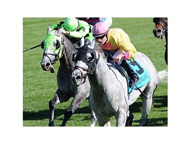 "It's Silver Timber (right) again in the Woodford Stakes.<br><a target=""blank"" href=""http://www.bloodhorse.com/horse-racing/photo-store?ref=http%3A%2F%2Fpictopia.com%2Fperl%2Fgal%3Fprovider_id%3D368%26ptp_photo_id%3D9226165%26ref%3Dstory"">Order This Photo</a>"