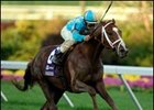 "English Channel will stand for $25,000. <br><a target=""blank"" href=""http://www.bloodhorse.com/horse-racing/photo-store?ref=http%3A%2F%2Fpictopia.com%2Fperl%2Fgal%3Fprovider_id%3D368%26ptp_photo_id%3D2627024%26ref%3Dstory"">Order This Photo</a>"