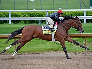 Kentucky Derby contender Keen Ice works at Churchill Downs April 25.