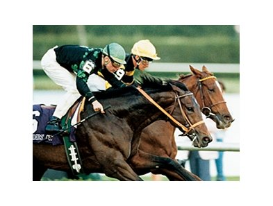 Prized in the 1989 Turf.