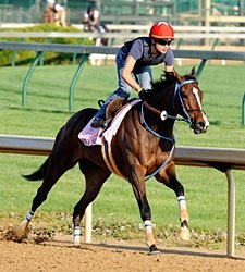 Jody Slew Works Half-Mile at Churchill