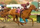 "Evita Argentina won the Nov. 16 Moccasin Stakes at Hollywood Park. <br><a target=""blank"" href=""http://www.bloodhorse.com/horse-racing/photo-store?ref=http%3A%2F%2Fpictopia.com%2Fperl%2Fgal%3Fprovider_id%3D368%26ptp_photo_id%3D6753222%0D%0A%26ref%3Dstory"">Order This Photo</a>"