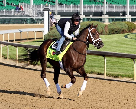 Carpe Diem on the track at Churchill Downs on April 28, 2015.