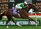 Snow Polina, ridden by Jerry Bailey, wins the Grade I $500,000 Beverly D. at Arlington International Racecourse.