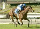 Elusive Diva wins Maddy 'Cap on opening day of Oak Tree at Santa Anita.
