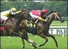 Poker Handicap winner Affirmed Success faces Wrangler in the Toboggan Handicap.