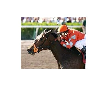 Miss Shop wins the Rampart Handicap, Sunday at Gulfstream Park.
